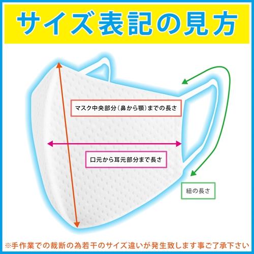 3枚以上で送料無料 会食用 耳ヒモ交換可能 速乾「洗えるマスク」 銀イオン配合くり返し洗って使える高耐久伸縮性
