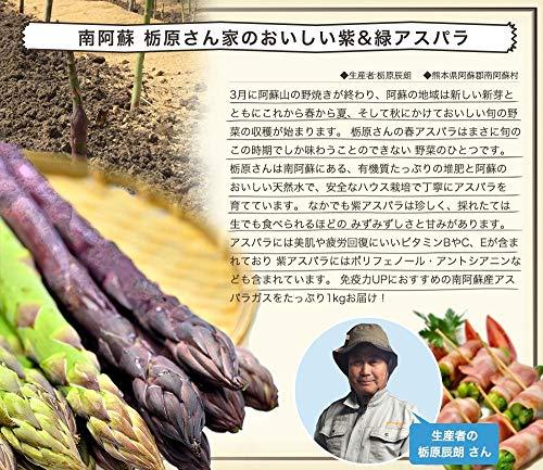 【紫&緑アスパラ1kg 付き】 南ASOの水素水 60本セット