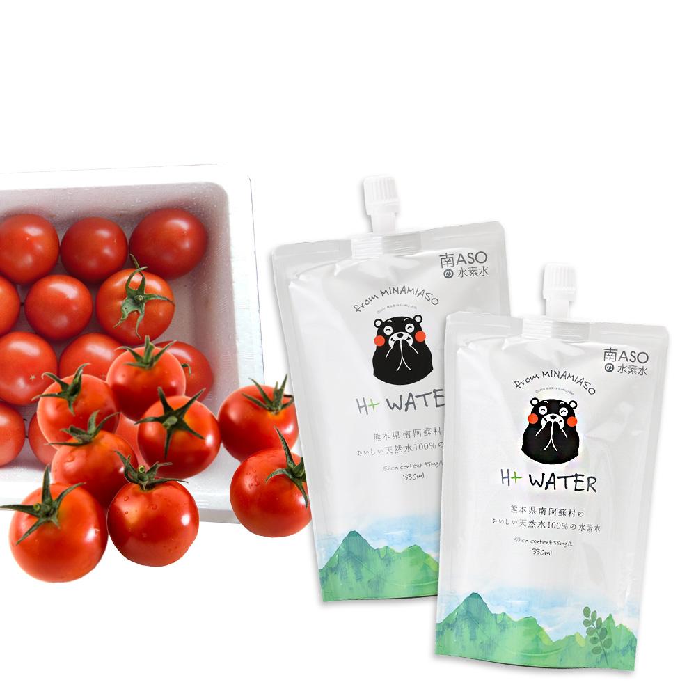 【高原トマト1kg 付き】 南ASOの水素水 くまモンパッケージ 60本セット