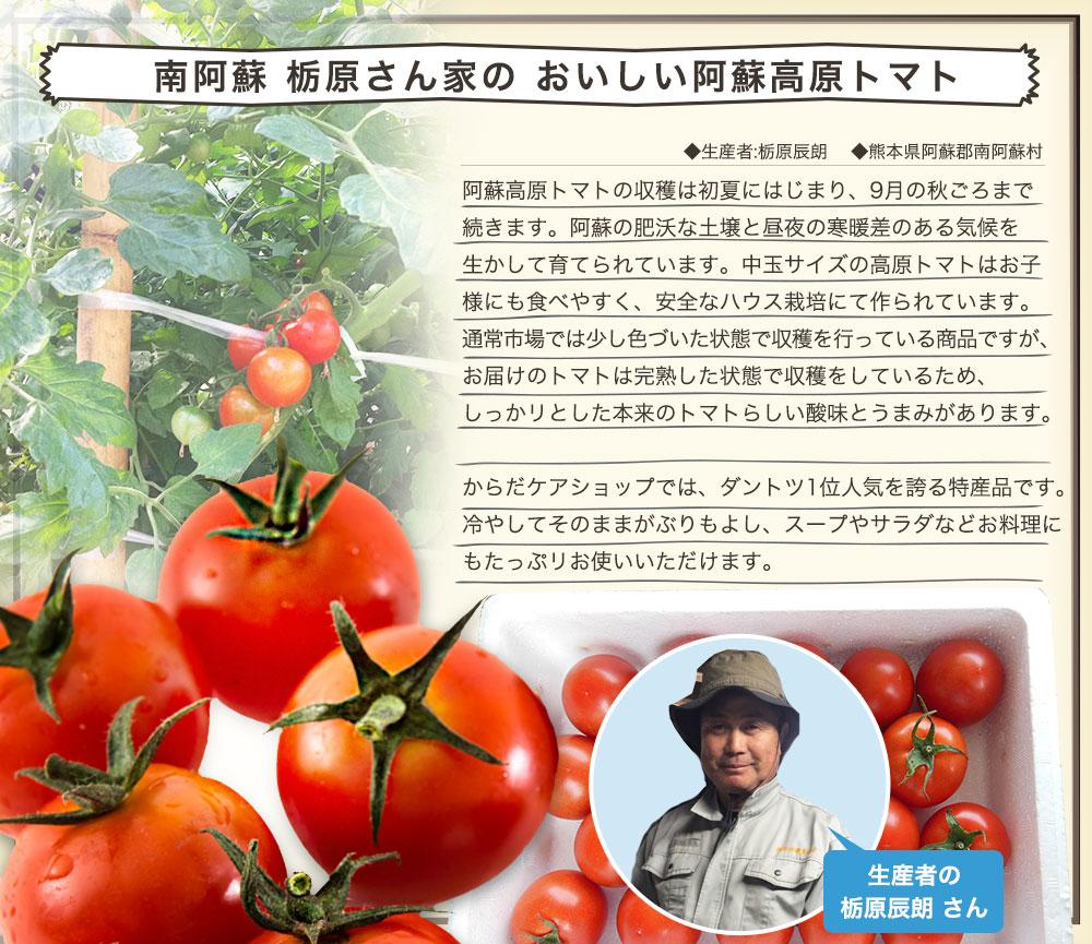 【高原トマト1kg付き】 シリカビヨンドリッチ 60本セット