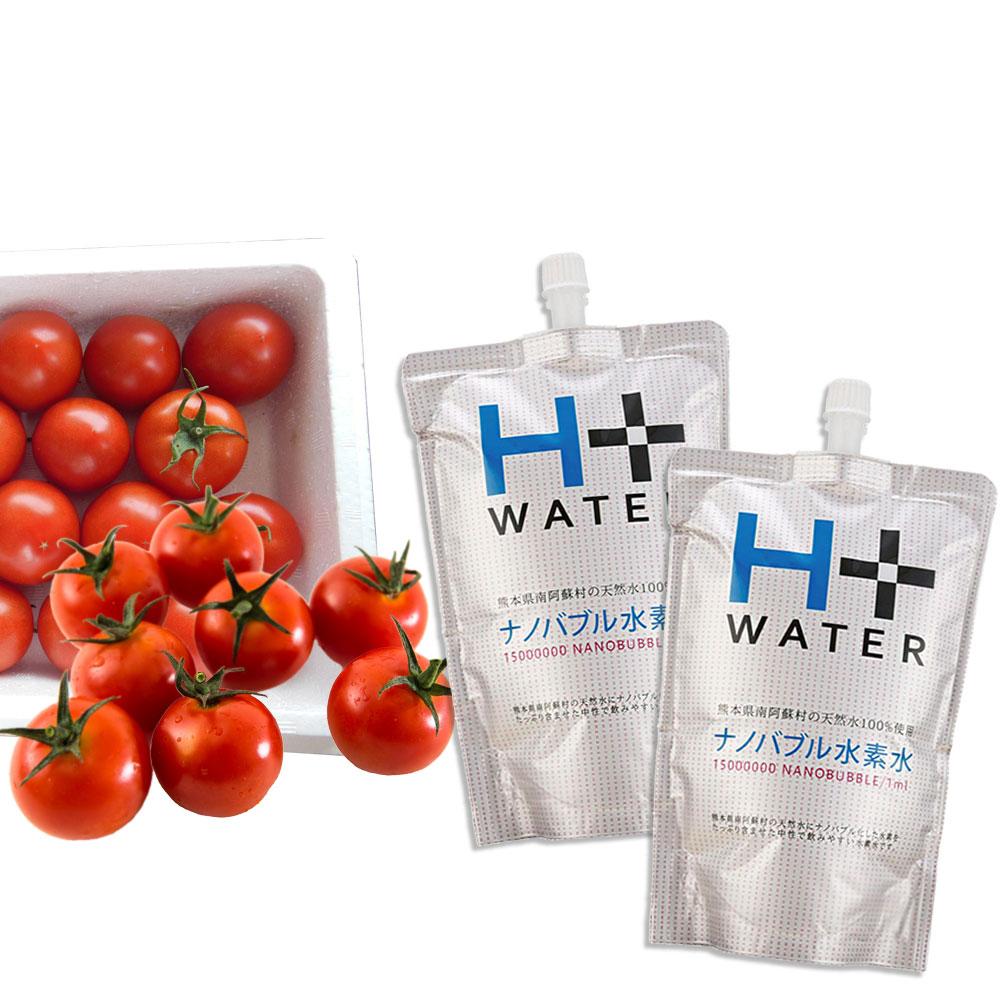 【高原トマト1kg 付き】 南ASOの水素水 60本セット