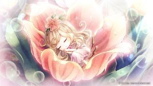 【通常版】絶対迷宮 秘密のおやゆび姫 (PSVitaソフト)
