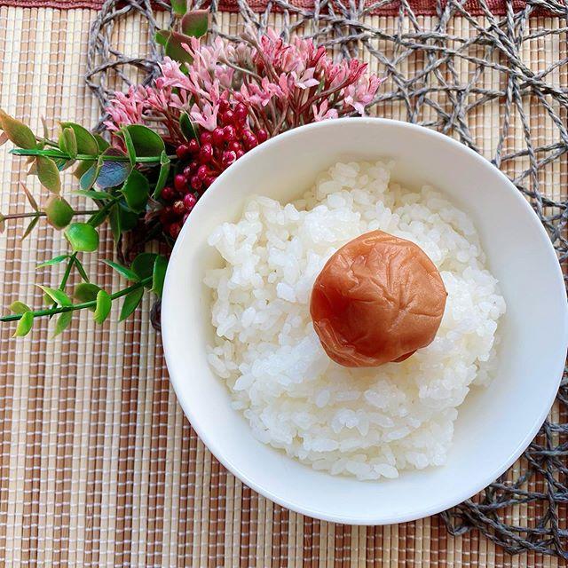 紀州南高梅 天味(塩分約4%)