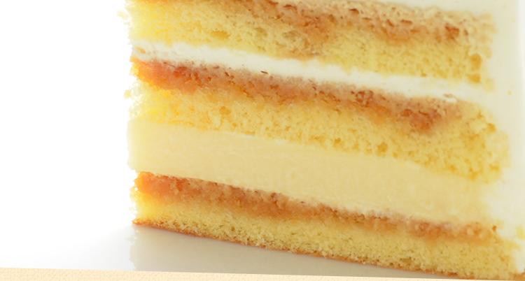 【5号サイズ】Snow~プリンをとじこめた真っ白なクリスマスケーキ~[送料無料]【冷凍】