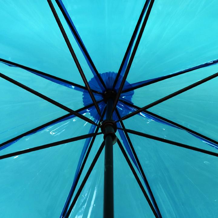 ビニール傘50cm カラー 青色(ブルー)
