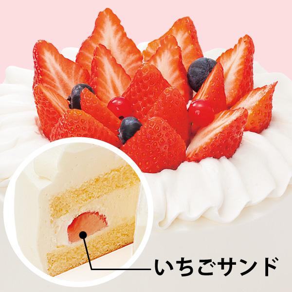 【BD】いちごスペシャル (約15cm)