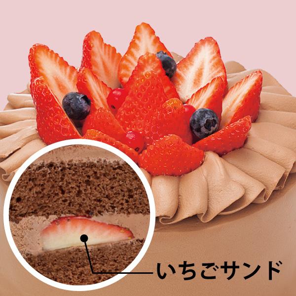 【BD】いちごスペシャル 生チョコクリーム (約12cm)