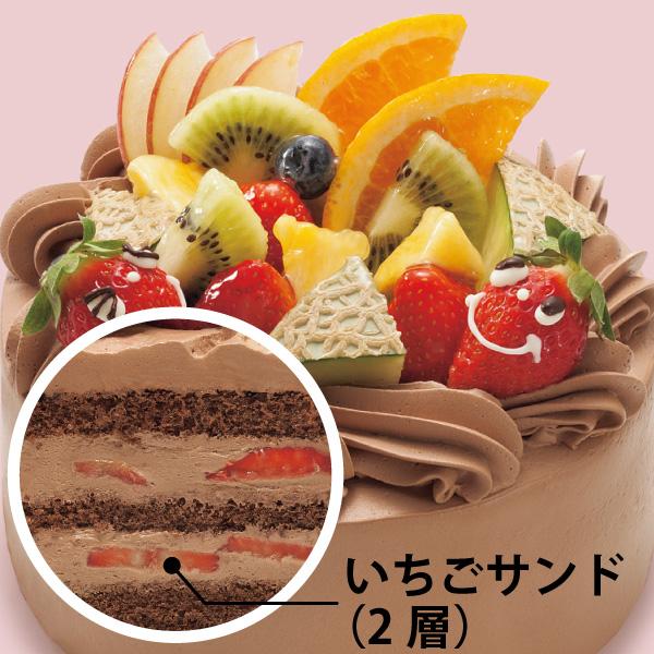 【BD】シュシュアニバーサリー 生チョコクリーム (約18cm)