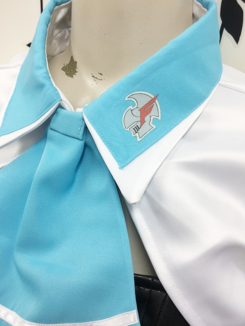 新世紀GPXサイバーフォーミュラRoad To The INFINITY ユニオンセイバー キャンギャル 風衣装