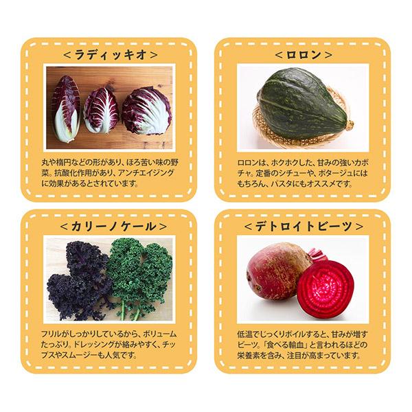 野菜 詰め合わせ セット ヨーロッパ ヨーロッパ野菜 サラダ 珍しい野菜 スタンダード お取り寄せ グルメ ギフト  北国からの贈り物 送料無料