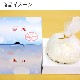 北海道チーズケーキ雪丸