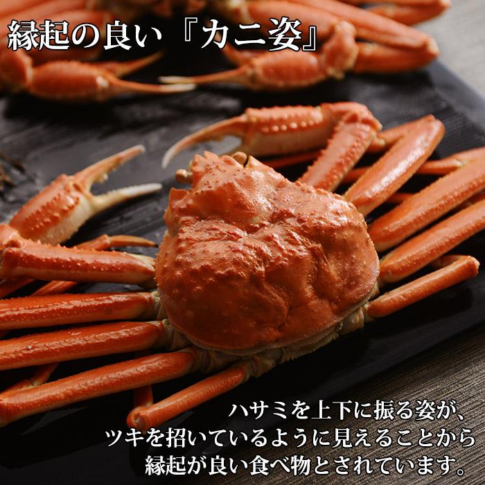 ズワイガニ 姿 3kg (5尾)化粧箱入 セット かに set 蟹 ギフト 蟹姿 ずわいがに カニ すがた gift お祝い 食品 プレゼント 送料無料