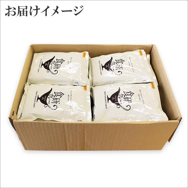 レトルト カレー 食研カレー 200g 40袋 業務用パッケージ セット レトルトカレー レトルト食品 スープカレー セット 詰め合わせ お取り寄せ 北国からの贈り物 送料無料