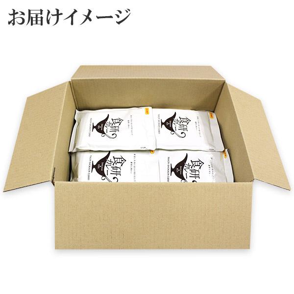 レトルト カレー 食研カレー 200g 20袋 業務用パッケージ セット レトルトカレー レトルト食品 スープカレー セット 詰め合わせ お取り寄せ 北国からの贈り物 送料無料