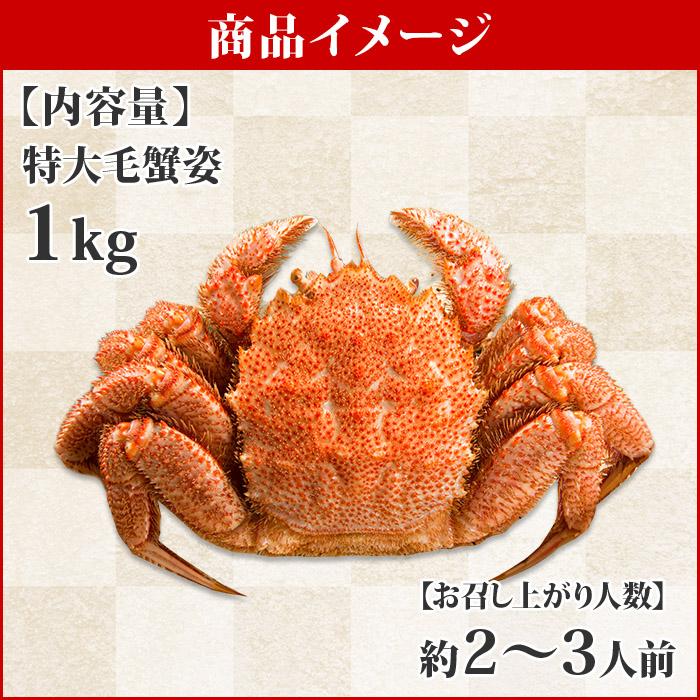 毛蟹 特大 1kg前後 蟹 カニ かに ボイル ロシア産