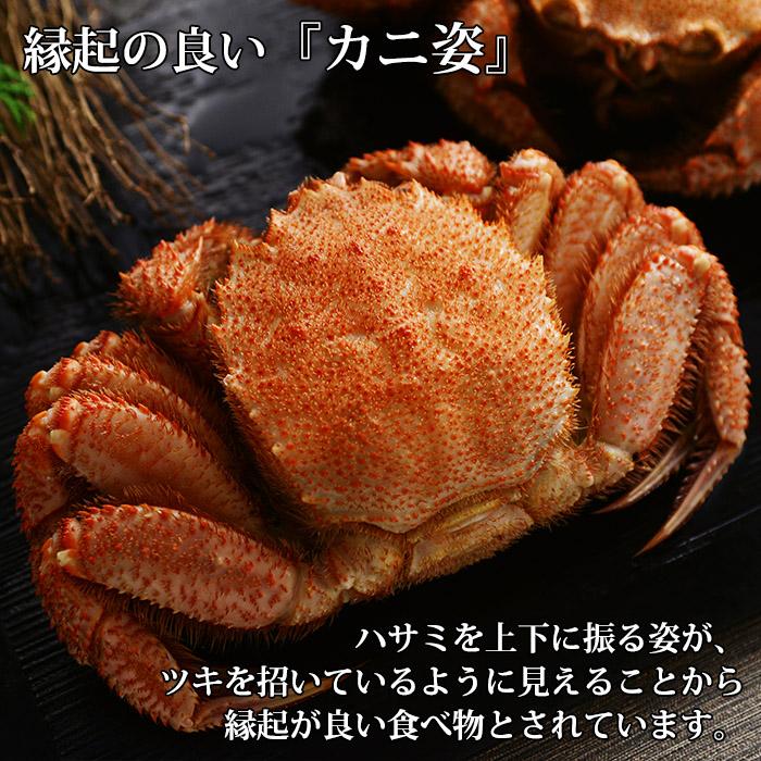 毛蟹 特大 1.2kg前後 蟹 カニ かに ボイル ロシア産