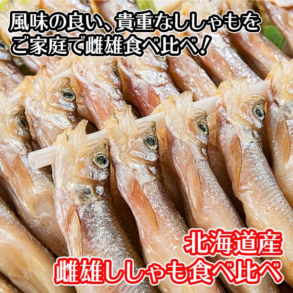 北海道産 ししゃも 雌雄 食べ比べ セット 40尾 オス メス 魚 海鮮 食材 材料 グルメ お取り寄せ 北国からの贈り物 送料無料