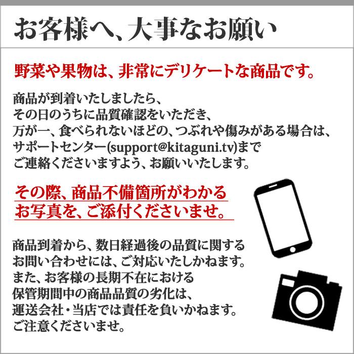 北海道産 行者にんにく アイヌネギ 1kg 生冷蔵 ◆出荷予定:4月下旬 送料無料 ※日時指定不可
