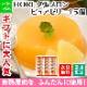 敬老の日 北海道 夕張メロンピュアゼリー15個セット(HORI) ※最短8日後以降お届け 送料無料