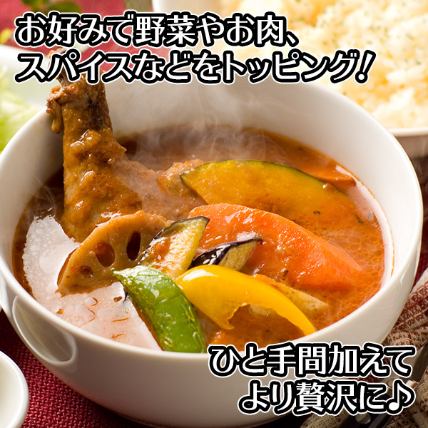 北海道スープカレー10食セット(北国チキンレッグ/南家/天竺/ココナッツ)業務用 送料無料