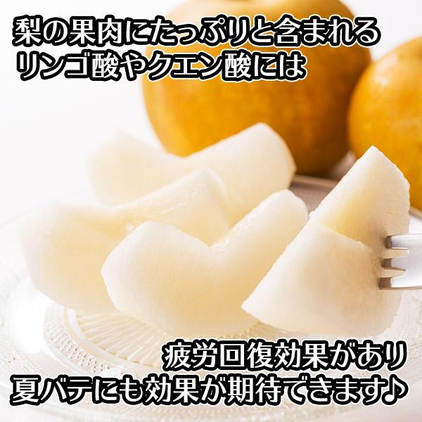 茨城県産 幸水梨 秀品 ギフト 計5kg前後(12-15個) 送料無料 ◆出荷予定:8月中旬 ※日時指定不可