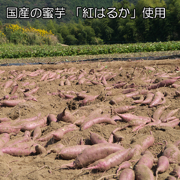 皮付き 黄金干し芋 北海道産 国産 10袋 1kg 無添加 紅はるか プチギフト お菓子 スイーツ おかし さつまいも 干しいも 干しイモ ほしいも グルメギフト 贈答品 お取り寄せ 送料無料