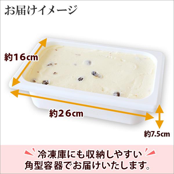北海道 アイスクリーム ラムレーズン ジェラート 2L 業務用 2リットル レーズン アイス フルーツ 大容量 いっぱい 牛乳 スイーツ 手作り Gift 贈り物 贈答品 ギフト プレゼント お取り寄せ 北海道
