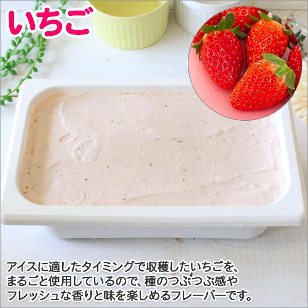 北海道 アイスクリーム いちご ジェラート 2L 業務用 2リットル イチゴ アイス 苺 フルーツ 大容量 いっぱい 牛乳 スイーツ 手作り Gift 贈り物 贈答品 ギフト プレゼント お取り寄せ 北海道
