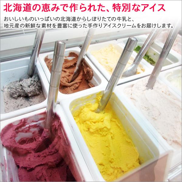 北海道 アイスクリーム ソルトロック ジェラート 2L 業務用 2リットル ソルト アイス 塩 大容量 いっぱい 牛乳 スイーツ 手作り Gift 贈り物 贈答品 ギフト プレゼント お取り寄せ 北海道