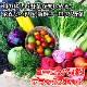 野菜 詰め合わせ セット ヨーロッパ ヨーロッパ野菜 サラダ 珍しい野菜 デラックス お取り寄せ グルメ ギフト  北国からの贈り物 送料無料