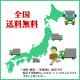 北海道追分産 アサヒメロン 計2.6kg前後(優品または秀品2玉)【5月下旬〜9月末出荷予定】