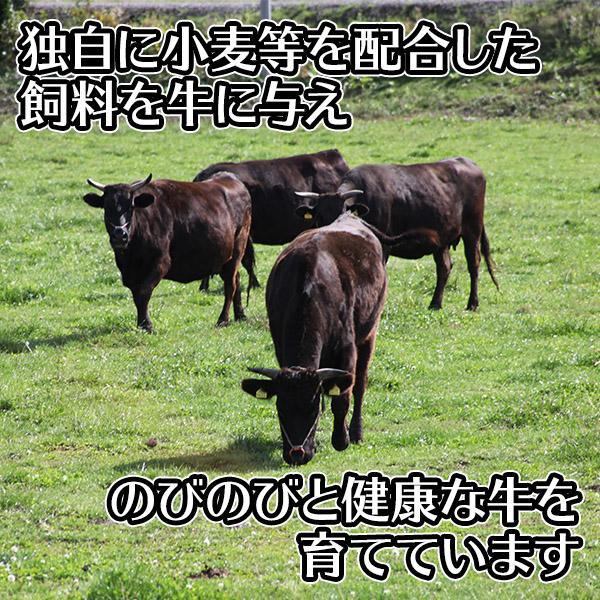 北海道産 ふらの和牛 黒毛和牛 切り落とし500g 肉 国産 牛肉 しゃぶしゃぶ すき焼き 北国からの贈り物 肉の山本 送料無料 ※最短8営業日以降お届け