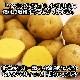 北海道産 じゃがいも インカのめざめ S-Lサイズ 10kg前後 北海道 ジャガイモ じゃが芋 芋 インカ 北国からの贈り物 送料無料 ◆出荷予定:10月中旬-11月上旬 ※日時指定不可