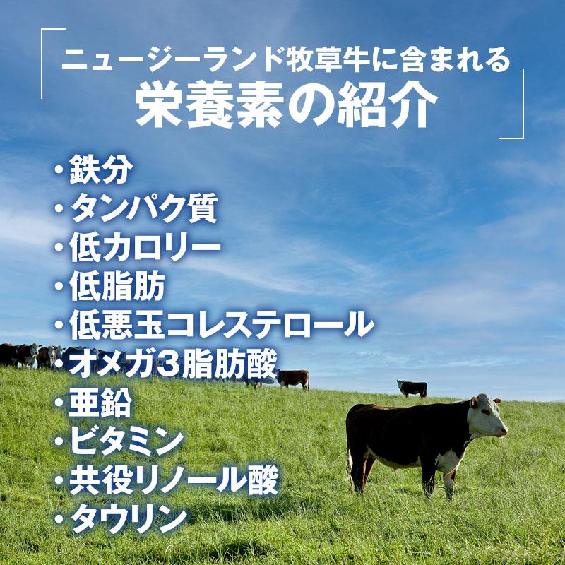 【量り売り】シルバーファーンファームス社 ニュージーランド牧草牛 チルド 牛 カタロース正肉 ブロック(1本単位出荷)(チャックロール)リザーブグレード【1パック:5.0〜8.0kg】