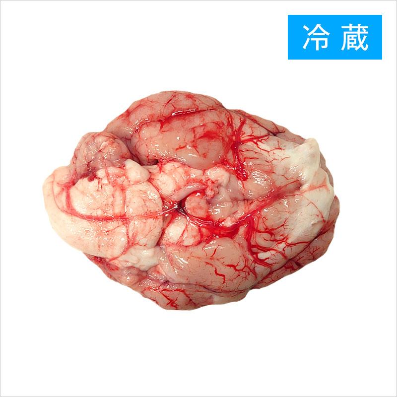 国産豚の脳みそ(セルベル) チルド品【1パック:約100g】