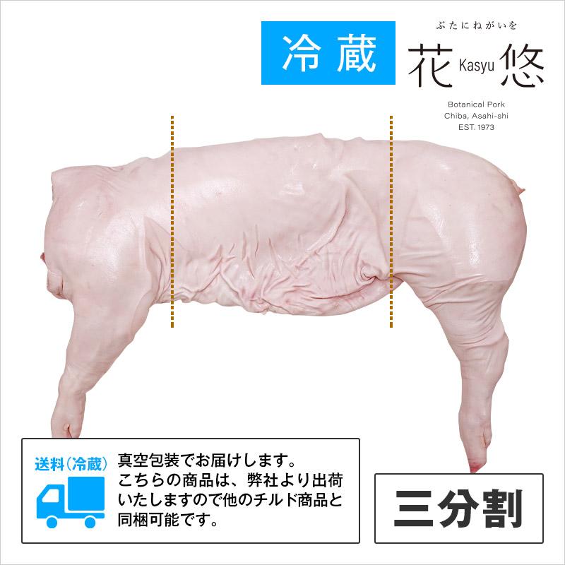 千葉県産 花悠仔豚(メス限定) 半丸(骨付 枝肉)・三分割