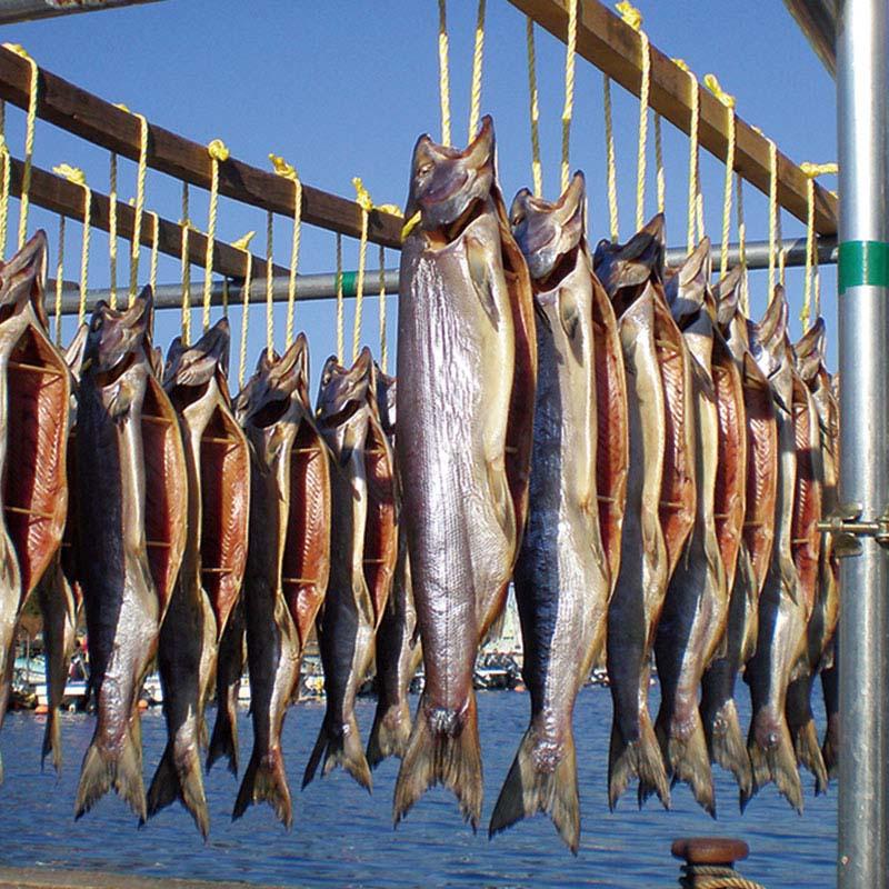 05−02<リアス海藻店>寒風干し新巻鮭(姿造り)