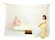 ベッド用 綿蚊帳 生成り シングル
