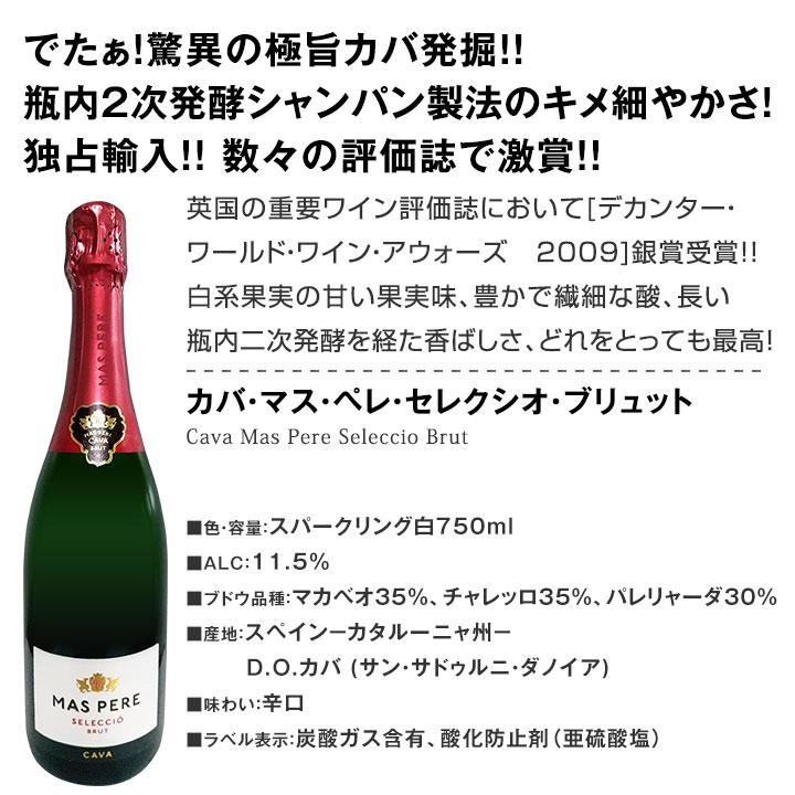 【送料無料】41%OFF!!必見ベストセラーバラエティ!当店代表する人気一押しワインばかりを集めた渾身の赤白泡スペシャルパーティー10本セット!