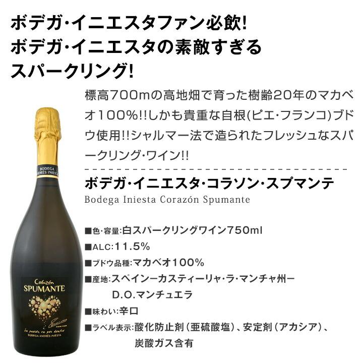 【送料無料】2020母の日ギフトセット泡B プレゼント ギフト 実用的 2020 母親 誕生日 ワイン スパークリング セット スパークリングワイン お酒 スパークリングワインセット ワインセット 750ml