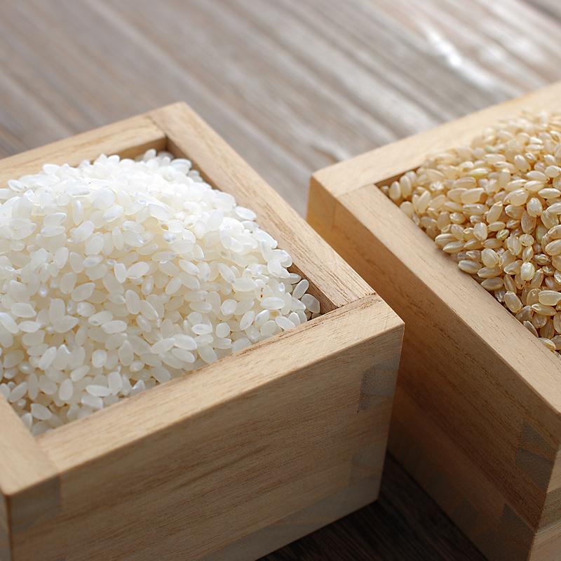 自然栽培米 新潟産コシヒカリ(従来品種)「六花」白米 2kg