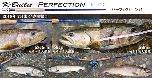 Perfection (パーフェクション) 9ft #4