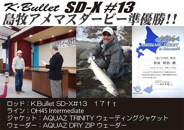 SD-X #13 (17ft) [A0002 010]