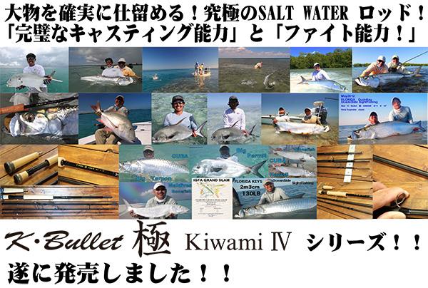 極KIWAMIシリーズ(ソルトウォーター)
