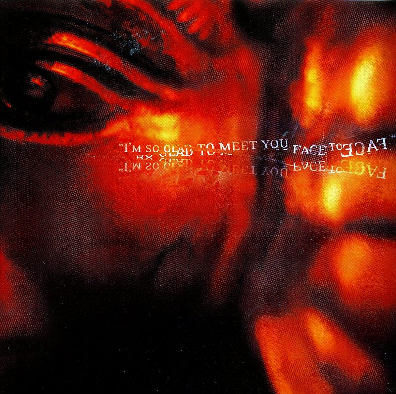 TOMMY LEE/NEVER A DULL MOMENT トミー・リー 2002年作
