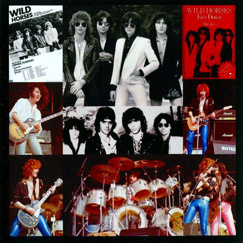 WILD HORSES/THE FIRST ALBUM ワイルド・ホーシズ 80年作 リマスター盤