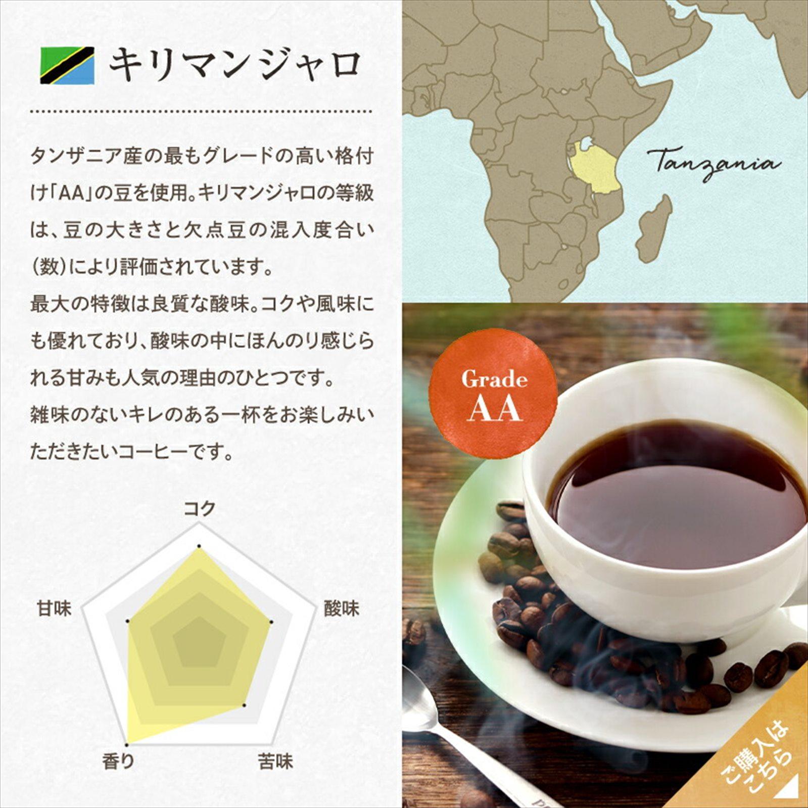 コーヒー 珈琲 MGCテトラコーヒー エチオピア モカ 6g30包 2000円  ティーパック 水出しコーヒー
