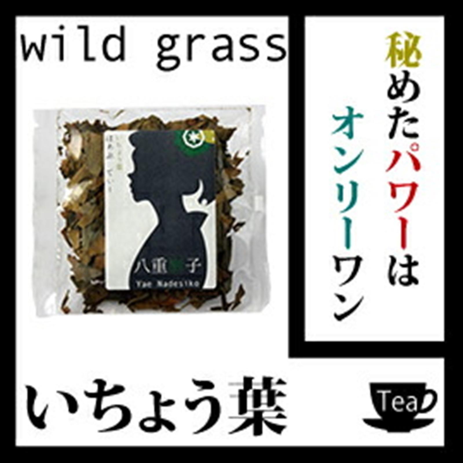 銀杏茶100g 秘めたパワーはオンリーワン!【健康】【健康茶/お茶】いちょう OM