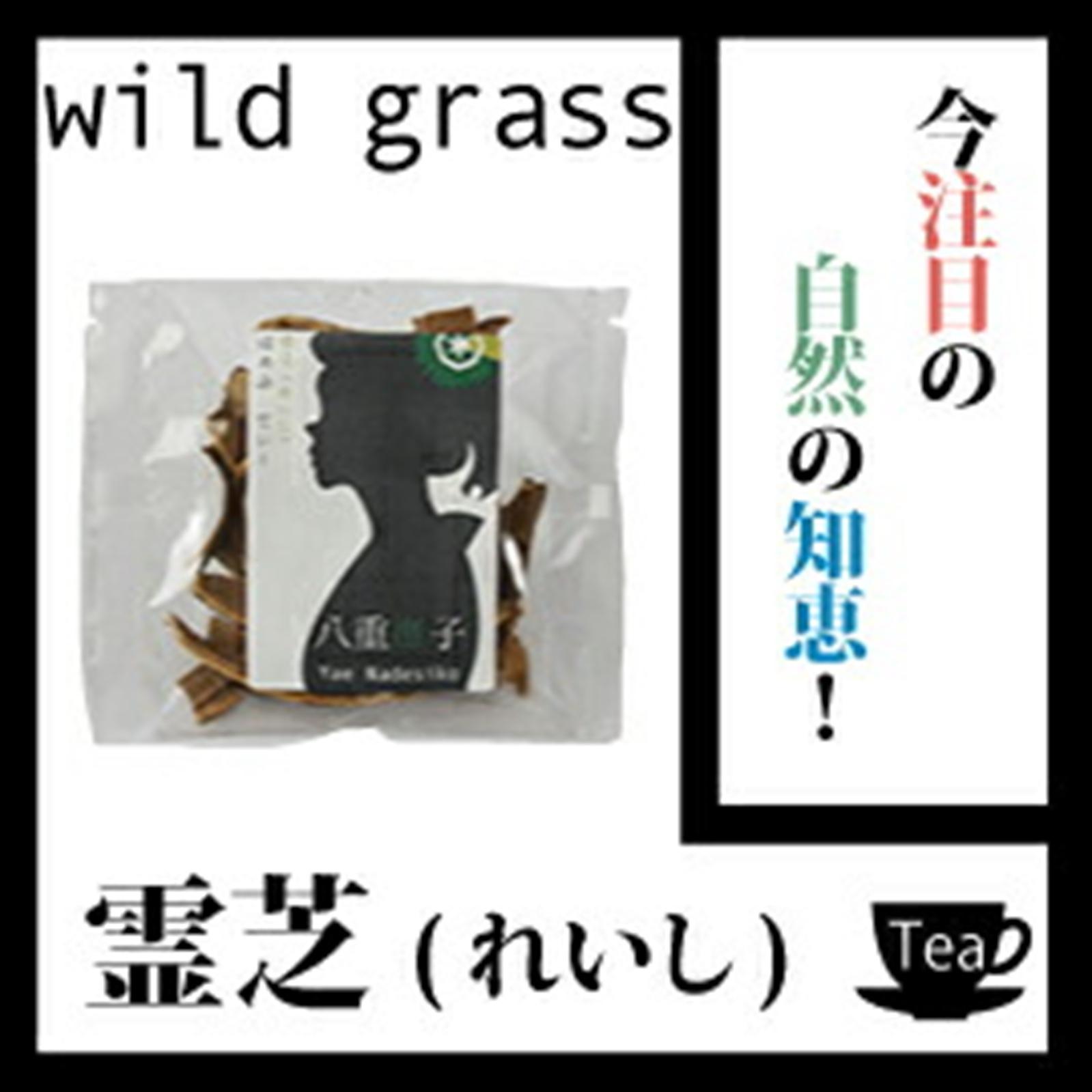霊芝100g 今注目の自然の知恵!【健康】【ノンカフェイン】レイシ茶