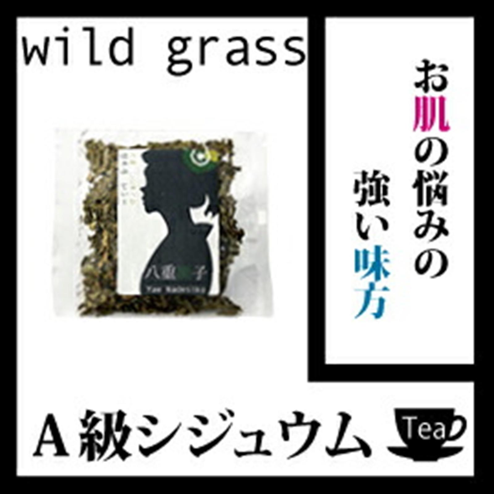 【送料無料】卸値価格!A級シジュウム茶(グァバ茶)45g お肌の悩みの強い味方!【健康】A級シジュウム茶(グァバ茶)